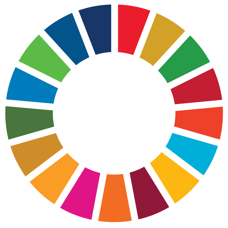 SDG Wheel Transparent – Bountifield International