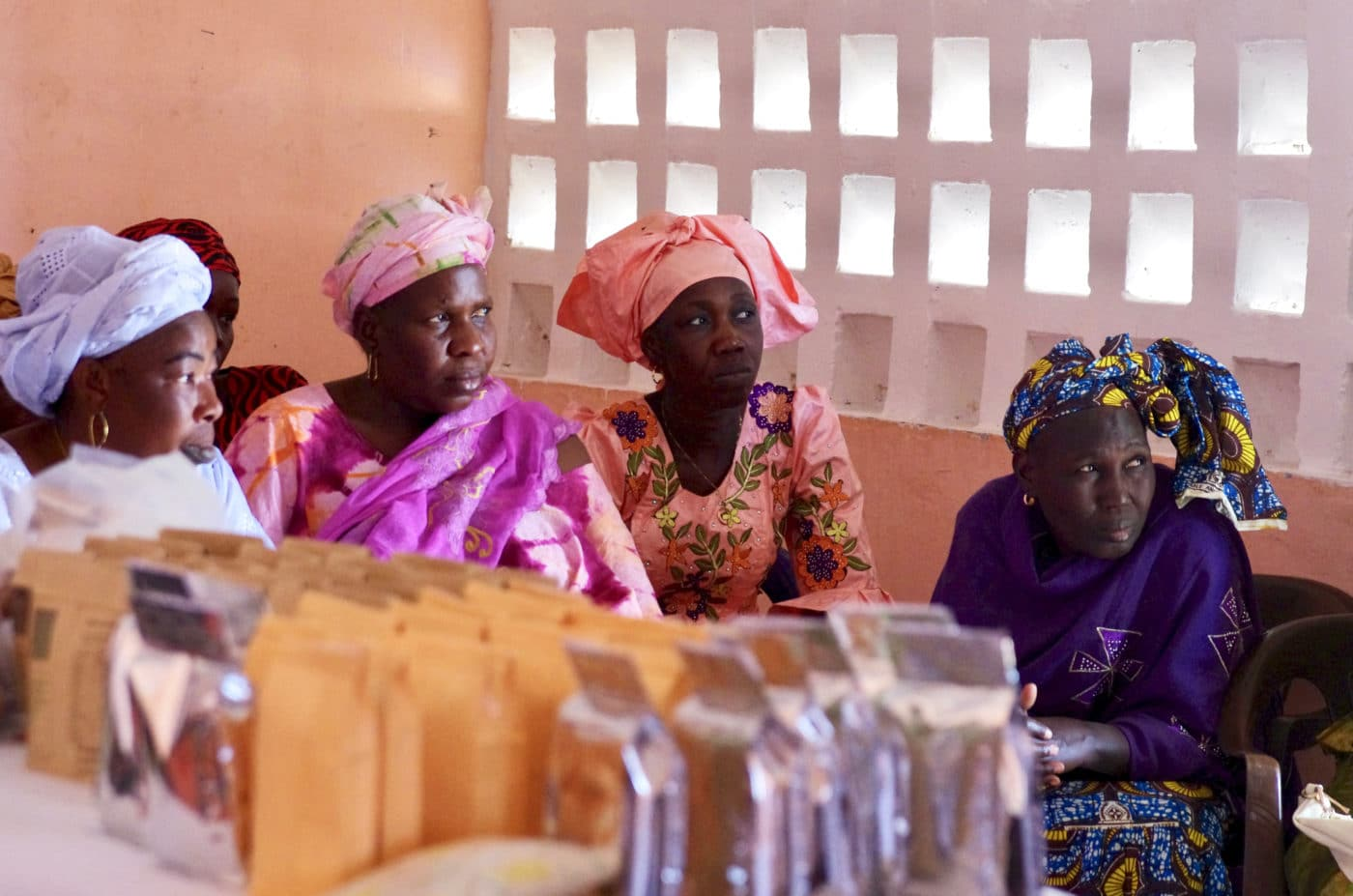 Women at a training session in Senegal.